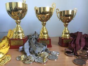 """""""TauCup2016"""" tarptautinis vaikų futbolo turnyras"""